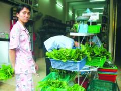 Giá rau xanh tăng vọt vì nắng nóng