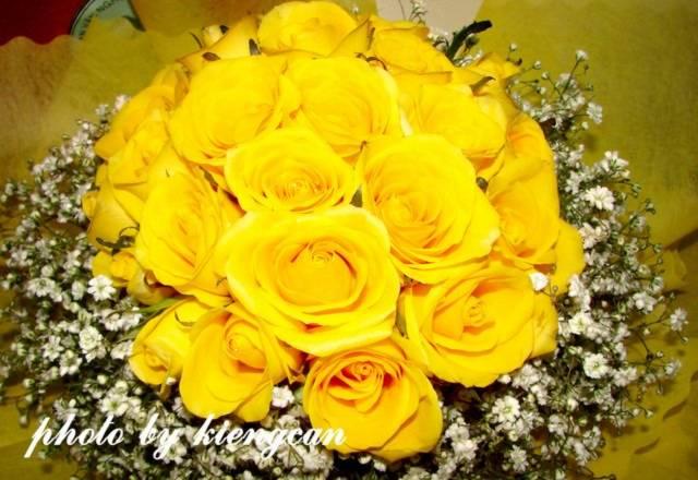 tamtay.vn - photo - Hoa đẹp