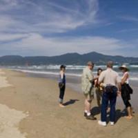 Lượng du khách nước ngoài đến Việt Nam tăng mạnh