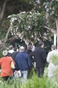 Năm triệu đô la gắn trên cây ở công viên