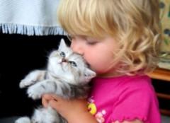 Ngọt ngào ảnh bé và vật nuôi