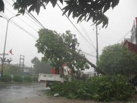 Bão số 3 tàn phá Nghệ An, Hà Tĩnh