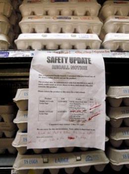 Mỹ thu hồi hơn nửa tỷ quả trứng nhiễm khuẩn