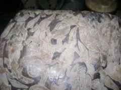 Những hòn đá được chạm khắc ở Ica: Một thư viện tiền sử?