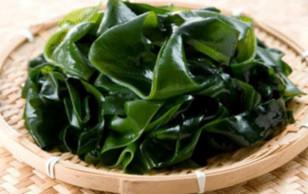 Rong Biển một lọai thực phẩm bổ dưỡng cũng là thảo dược tuyệt diệu