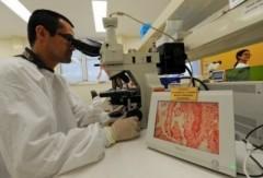 """""""Siêu vi khuẩn"""" xuất hiện tại Úc"""