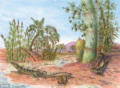 Tìm thấy dấu chân loài bò sát 380 triệu năm trước