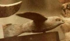 Vén bức màn văn minh tiền sử: (Phần 6) Hoạt động hàng không của người tiền sử