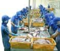 Xuất khẩu thủy sản vào Nga phấn đấu đạt 100 triệu USD