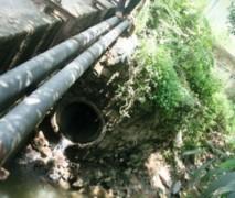 Bình Dương: Lại phát hiện nhà máy thủy hải sản xả thải ra môi trường
