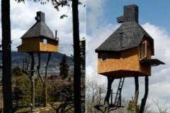 Những ngôi nhà tổ chim 'đẹp tuyệt vời' ở Nhật