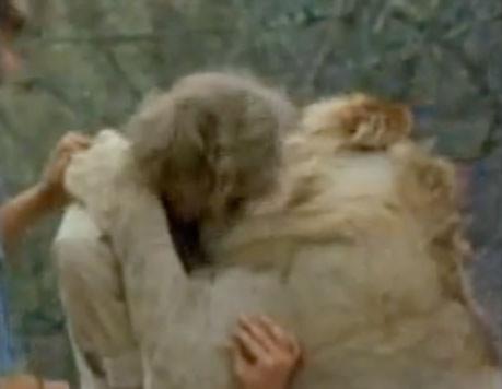 Rớt nước mắt trước tình cảm của động vật