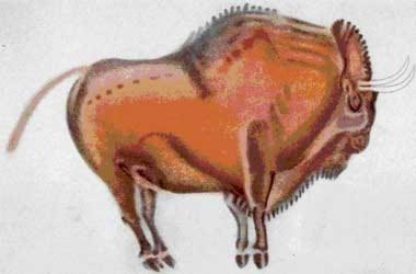 Tranh vẽ trong hang đá thời tiền sử (Phần 1)