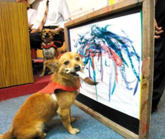 Chú chó Hữu Tiền đang thể hiện tài nghệ vẽ tranh.