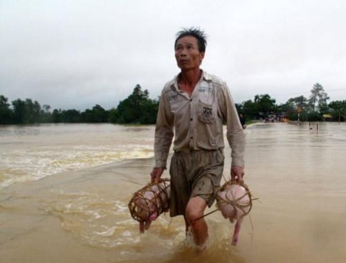 Chùm ảnh: Đau thương trải khắp vùng lũ, Tin tức trong ngày, lũ miền Trung, lũ lụt, bão lũ, lũ lịch sử, quần đảo Hoàng Sa, bão Megi, thiệt hại