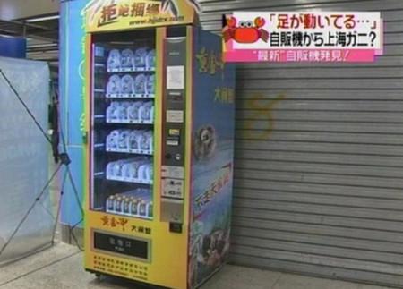 Những chiếc máy bán cua tự động.