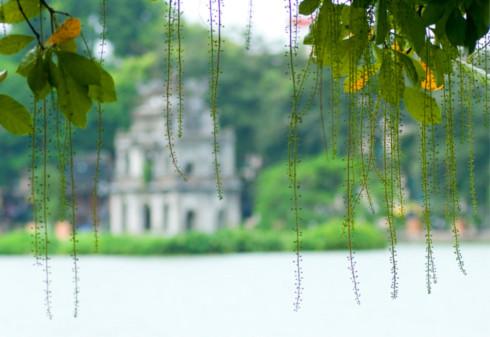 Những bài hát hay về Hà Nội