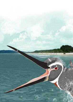 Phát hiện chim cánh cụt cao như… người