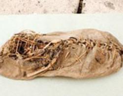 Tìm thấy mảnh váy cổ nhất thế giới