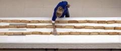Kỷ lục thế giới: Bánh Sandwich dài nhất