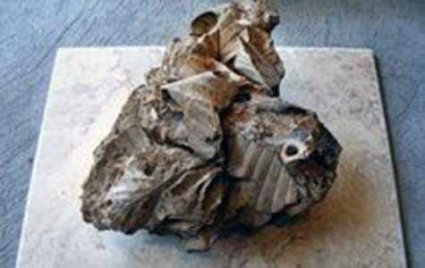 Phát hiện thuốc lá 2,5 triệu năm tuổi
