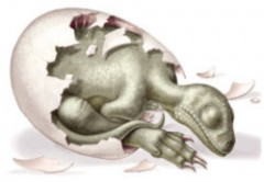 Phôi khủng long 190 triệu năm tuổi
