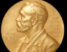 'Sẽ không có ai đến nhận giải Nobel Hòa bình'