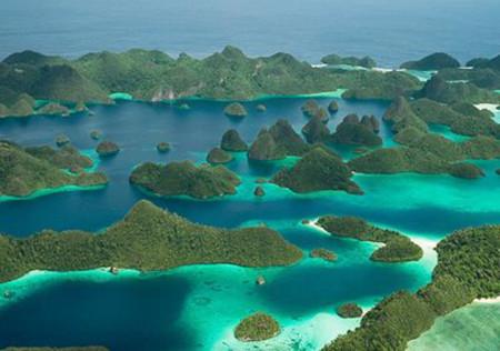 'Thiên đường' dành cho cá mập tại Đông Nam Á