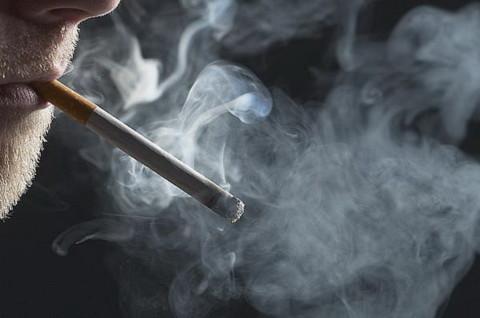 40 ngàn người VN chết vì thuốc lá mỗi năm