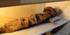 Bí ẩn xác ướp Ai Cập 1.700 năm