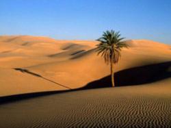Biến Sahara thành nhà máy quang năng lớn nhất thế giới