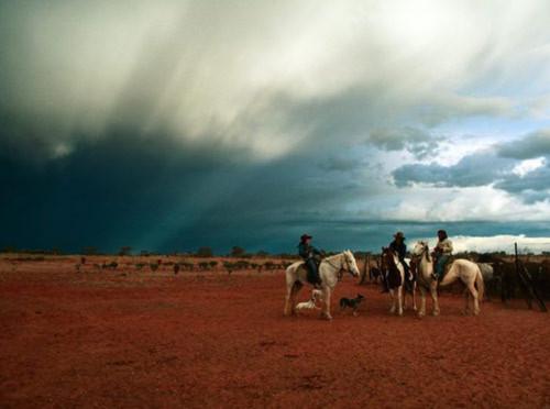 Cảnh đẹp mê hồn ở Australia - Tin180.com (Ảnh 5)