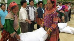 Dân đang đói, huyện lại để gạo ẩm mốc