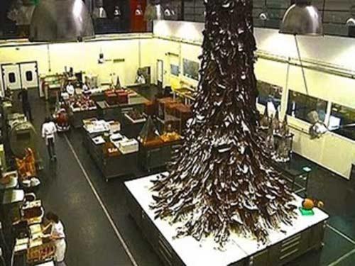 Kỷ lục thế giới: Cây Noel bằng socola cao 10m