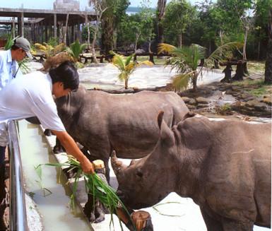 Kỷ lục Việt Nam: Vườn thú mở đầu tiên