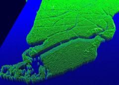 Lập bản đồ số 3D để ứng phó sự cố tràn dầu