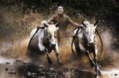 National Geographic công bố giải thưởng Ảnh đẹp 2010