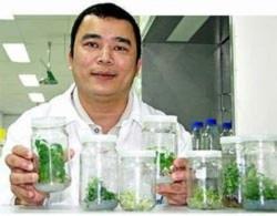 Nhà khoa học Việt ở Australia tạo bước đột phá sinh học