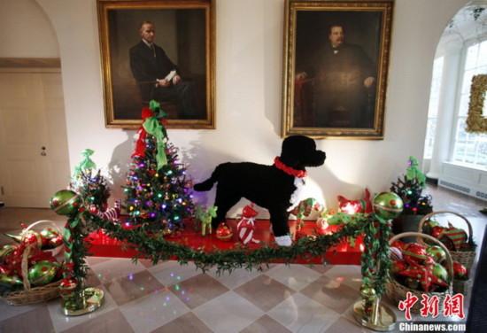Nhà Trắng trang hoàng lộng lẫy cho mùa Noel 2010