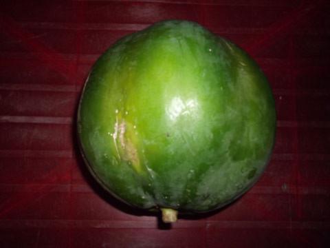 Trái đu đủ hình thù khác thường - Tin180.com (Ảnh 2)