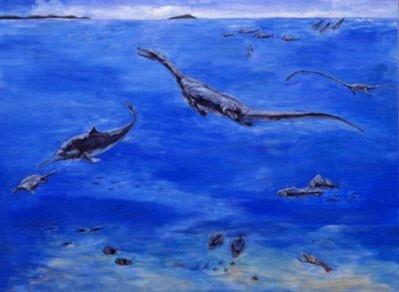 Trung Quốc phát hiện 'kho báu' hóa thạch 20.000 năm - Tin180.com (Ảnh 4)