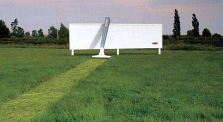 Bãi cỏ được cắt rất gọn ghẽ