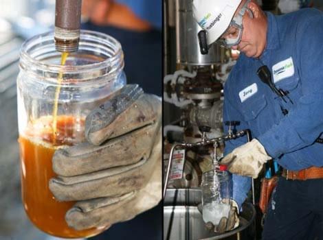 Biến mỡ động vật thành dầu diesel
