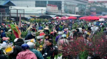 Các chợ hoa Tết Hà Nội nhộn nhịp vào xuân
