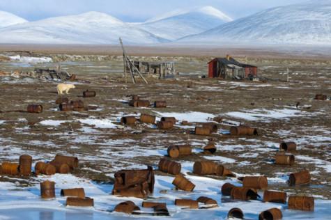 Cảnh khốn cùng ở Bắc Cực