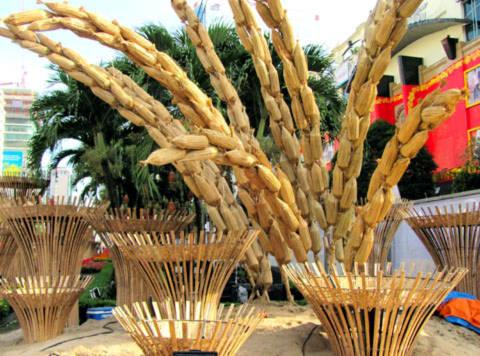 Những bông lúa trong phân đoạn