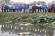 Hàng trăm xác lợn chết vứt cạnh khu dân cư, trường học