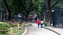 Hổ, khỉ 'co ro' trong vườn thú Hà Nội