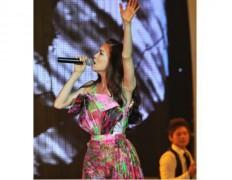 Hồ Ngọc Hà diện 7 trang phục trong đêm nhạc