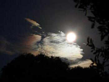 Mặt trăng và cơ thể người